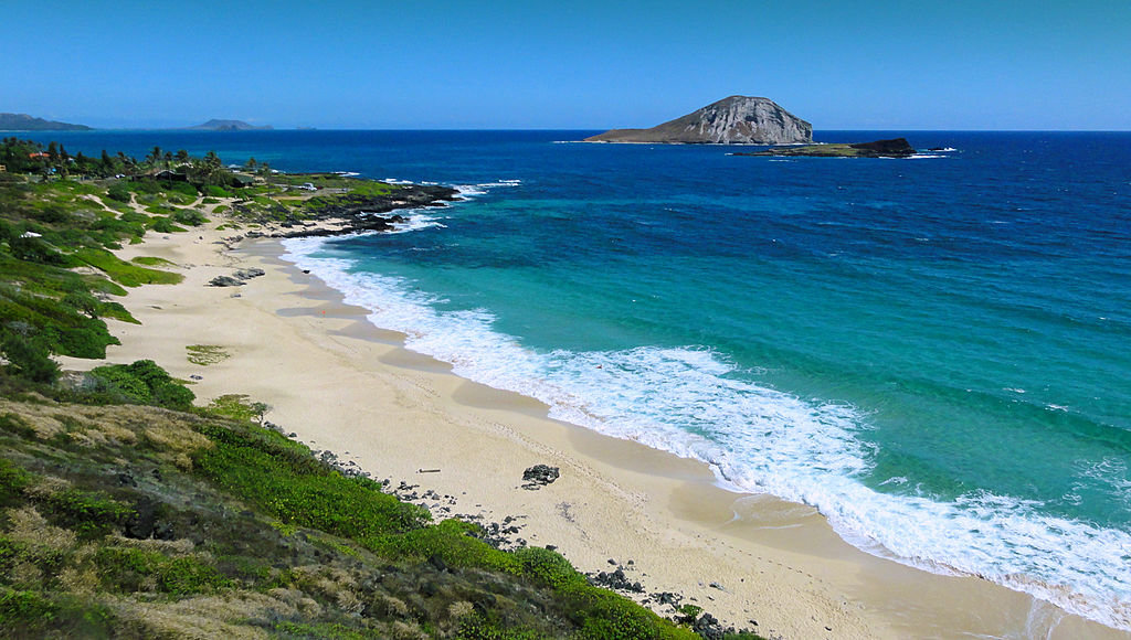 Makapuu Beach in Oahu