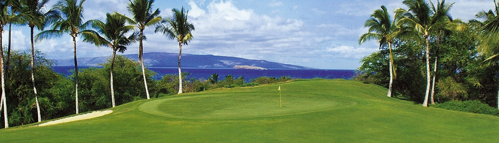 wailea golf course homes